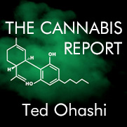 The Cannabis Report